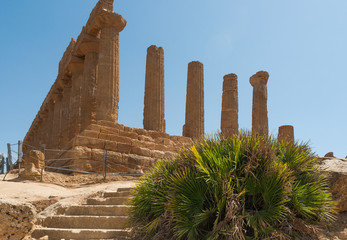 temples valley - Agrigento