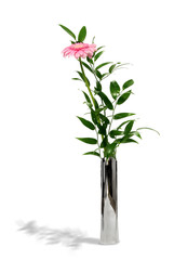 Pink gerber daisy in metal vase