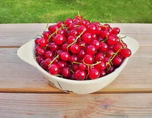 fresh red currant in the small bowl