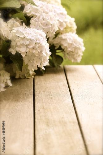 Foto op Plexiglas Hydrangea Hortensie auf holzterrasse