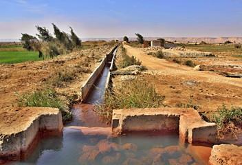Spring water in desert