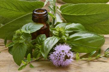 Pflanzenheilkunde Erboristeria Herbalism Herboristerie