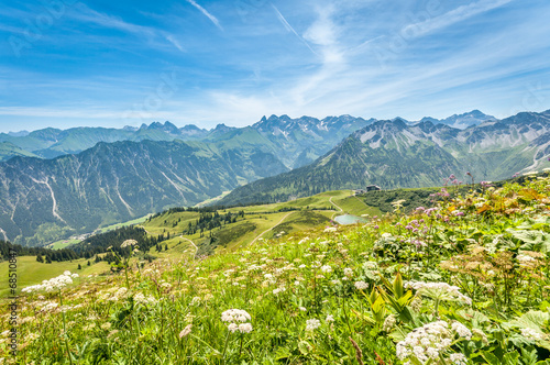 canvas print picture Fellhorn - Blumenberg