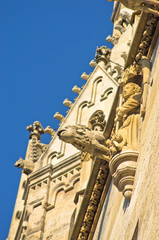 Monks and gargoyles from saint Stephen's catedral at Vienna