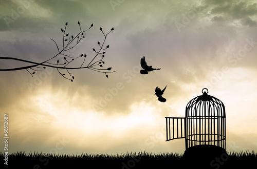 Leinwanddruck Bild Cage for bird at sunset