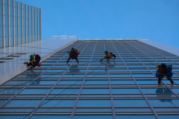 industrial climbers clean windows of high-rise buildings