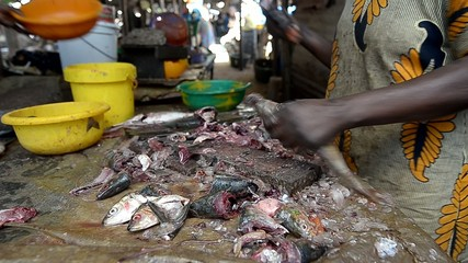 fish market in Dakar