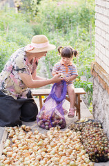grandmother and granddaughter with onions