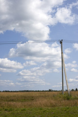Power line under blue sky with clouds of white