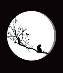 보름달고양이