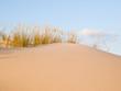 Dune background detail