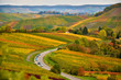 Germany autumn landscape with the view on vineyards - 68523049