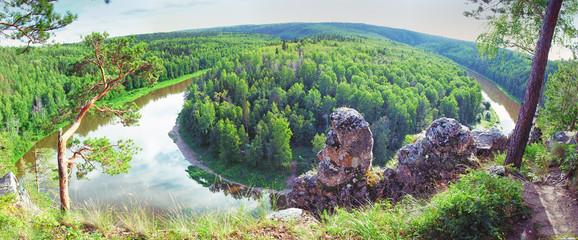 siberian taiga landscape