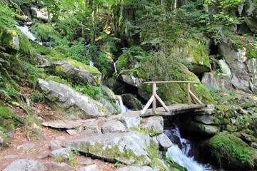 Petit pont dans la vallée de la Wormsa dans les Vosges
