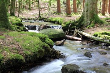 Cascades dans la vallée de la Wormsa dans les Vosges