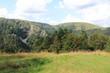 Paysages de la vallée de Munster