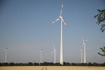 Windräder in Naturlandschaft