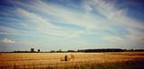 Idyllic Farmland Landscape
