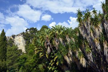 Botanic Garden Liguria
