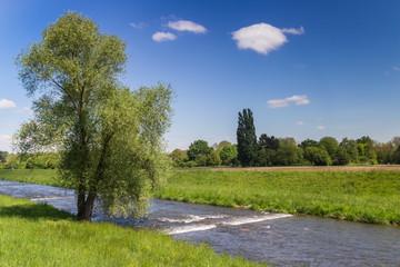 Along Dreisam River