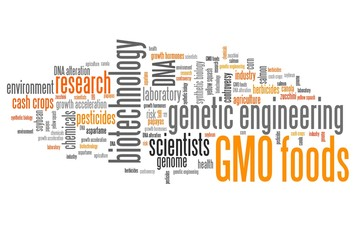 GMO foods - word cloud concept