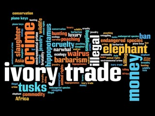 Ivory trade - word cloud concept