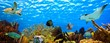 Leinwanddruck Bild - underwater panorama of a tropical reef in the caribbean