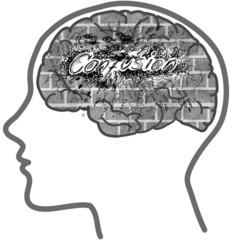 CONFUSION: profile with brain full of bricks