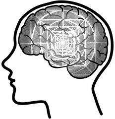 Human profile and brain with concentric circles