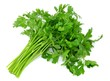 canvas print picture - parsley