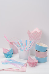 Kids Birthday Party Dinnerware. Paper And Plastic