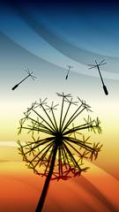 Dandelion sunset vector background