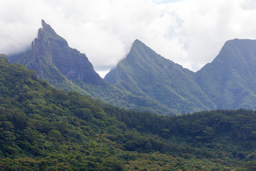 Belvedere viewpoint in Moorea, French Polinesia