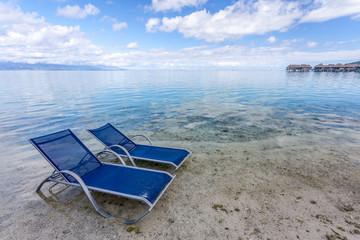 Lettini da mare blu in una spiaggia polinesiana
