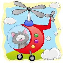Cat in helicopter