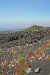 Volcanic slope. Etna, Sicily, Italy