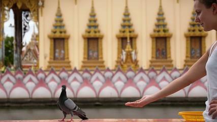 Girl Feeding Pigeons. Hesitatory and Timid Bird.