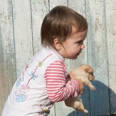 Ребёнок несёт щенка