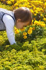 Ребенок нюхает живые цветы