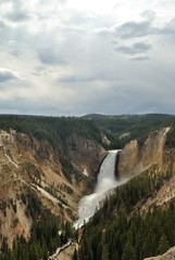 landscape of waterfall and canyone in yellowstone national park