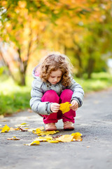 Curly little girl collects the fallen yellow leaves in autumn pa