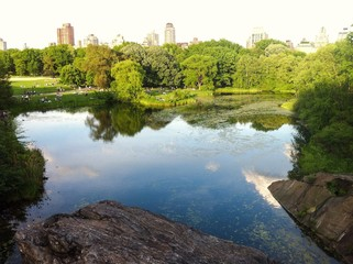 Great Lawn and Turtle Pond in Central Park