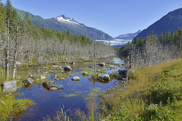 Wilderness Landscape in Alaska, USA
