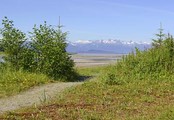 Wilderness Landscape in Alaska, USA