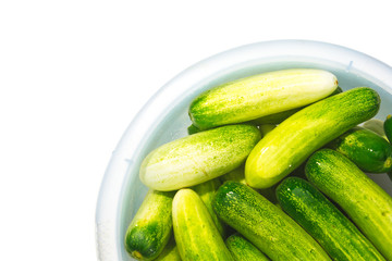 The green cucumbers in water on white background