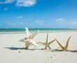 Gute Reise: Sommerurlaub am Meer  :)