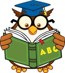 Wise Owl Teacher Cartoon Mascot Character Reading A ABC Book