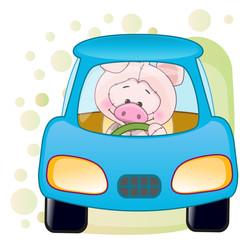 Pig in a car