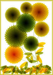 vector illustration of color transparent flowers