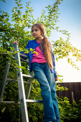 young girl standing on ladder at apple garden